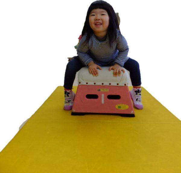 跳び箱の練習の写真2