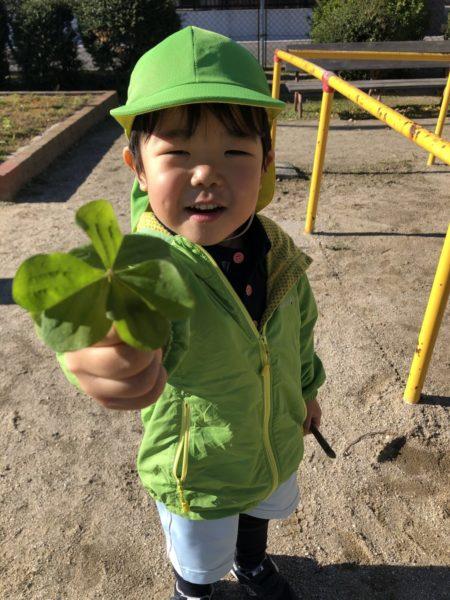 葉っぱを見つけた写真