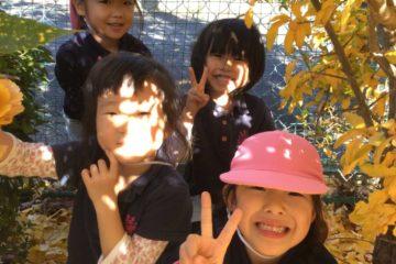 公園タイムの写真3
